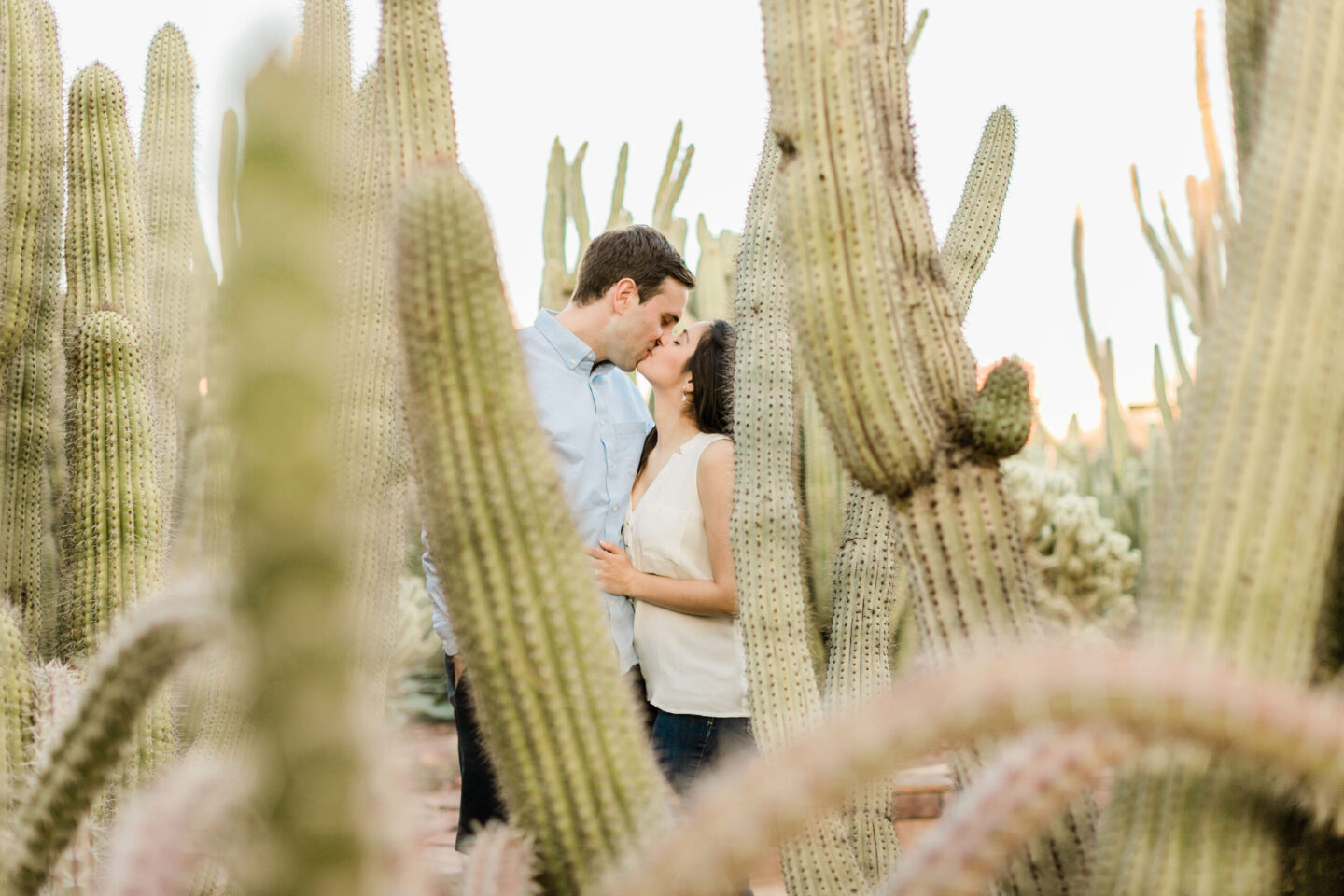 Couples Photography Desert Botanical Garden Phoenix Arizona